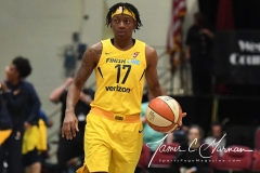 WNBA - New York Liberty 78 vs. Indiana Fever 75 (42)