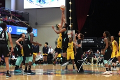 WNBA - New York Liberty 78 vs. Indiana Fever 75 (44)