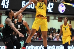 WNBA - New York Liberty 78 vs. Indiana Fever 75 (48)
