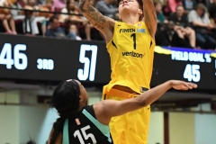 WNBA - New York Liberty 78 vs. Indiana Fever 75 (49)