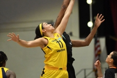 WNBA - New York Liberty 78 vs. Indiana Fever 75 (6)