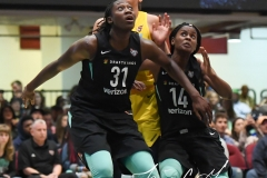 WNBA - New York Liberty 78 vs. Indiana Fever 75 (63)