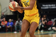 WNBA - New York Liberty 78 vs. Indiana Fever 75 (65)