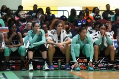 WNBA - New York Liberty 78 vs. Indiana Fever 75 (69)