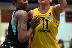 WNBA - New York Liberty 78 vs. Indiana Fever 75 (72)