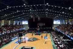 WNBA - New York Liberty 78 vs. Washington Mystics 95 (17)