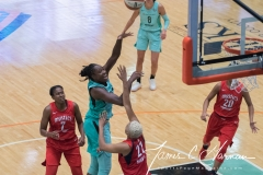 WNBA - New York Liberty 78 vs. Washington Mystics 95 (26)