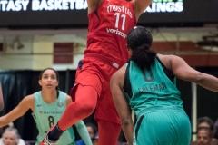 WNBA - New York Liberty 78 vs. Washington Mystics 95 (51)