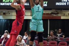 WNBA - New York Liberty 78 vs. Washington Mystics 95 (9)