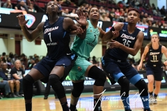 WNBA - New York Liberty 79 vs. Atlanta Dream 72 (55)