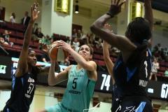 WNBA - New York Liberty 79 vs. Atlanta Dream 72 (80)