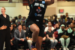 WNBA - New York Liberty 80 vs. Indiana Fever 81 (14)
