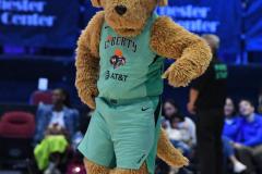 WNBA - New York Liberty 80 vs. Indiana Fever 81 (25)