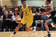 WNBA - New York Liberty 80 vs. Indiana Fever 81 (57)