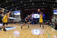 WNBA - New York Liberty 80 vs. Indiana Fever 81 (60)