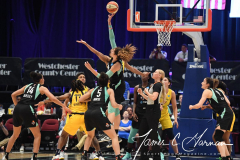 WNBA - New York Liberty 80 vs. Indiana Fever 81 (68)