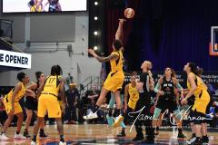 WNBA - New York Liberty 80 vs. Indiana Fever 81 (8)
