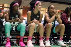 WNBA - New York Liberty 81 vs. Los Angeles Sparks 82 (25)