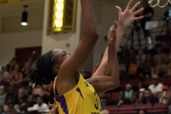 WNBA - New York Liberty 81 vs. Los Angeles Sparks 82 (27)