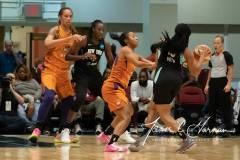 WNBA-New-York-Liberty-82-vs.-Phoenix-Mercury-95-13