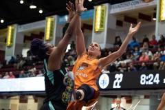 WNBA-New-York-Liberty-82-vs.-Phoenix-Mercury-95-20