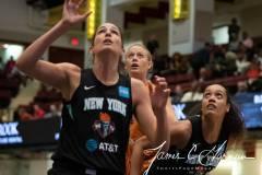 WNBA-New-York-Liberty-82-vs.-Phoenix-Mercury-95-24