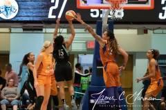 WNBA-New-York-Liberty-82-vs.-Phoenix-Mercury-95-28
