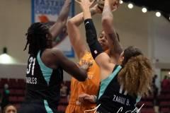 WNBA-New-York-Liberty-82-vs.-Phoenix-Mercury-95-6