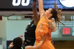WNBA-New-York-Liberty-82-vs.-Phoenix-Mercury-95-61