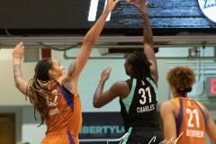 WNBA-New-York-Liberty-82-vs.-Phoenix-Mercury-95-9