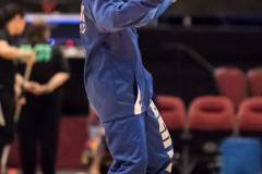 WNBA - New York Liberty 83 vs. Chicago Sky 91 (30)