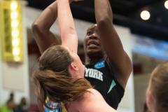 WNBA - New York Liberty 83 vs. Chicago Sky 91 (43)