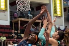 WNBA-New-York-Liberty-84-vs.-Connecticut-Sun-94-11