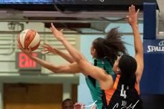 WNBA-New-York-Liberty-84-vs.-Connecticut-Sun-94-37