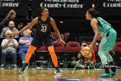 WNBA - New York Liberty 86 vs. Connecticut Sun 88 (10)