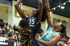 WNBA - New York Liberty 86 vs. Connecticut Sun 88 (13)
