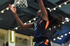 WNBA - New York Liberty 86 vs. Connecticut Sun 88 (15)