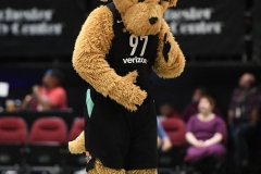 WNBA - New York Liberty 86 vs. Connecticut Sun 88 (29)