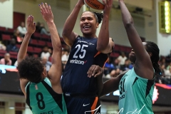 WNBA - New York Liberty 86 vs. Connecticut Sun 88 (31)