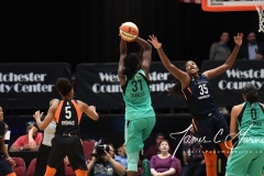 WNBA - New York Liberty 86 vs. Connecticut Sun 88 (33)