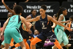 WNBA - New York Liberty 86 vs. Connecticut Sun 88 (34)