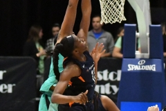 WNBA - New York Liberty 86 vs. Connecticut Sun 88 (42)