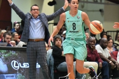 WNBA - New York Liberty 86 vs. Connecticut Sun 88 (44)