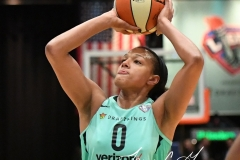 WNBA - New York Liberty 86 vs. Connecticut Sun 88 (45)