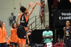 WNBA - New York Liberty 86 vs. Connecticut Sun 88 (47)