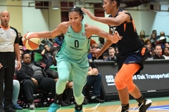 WNBA - New York Liberty 86 vs. Connecticut Sun 88 (50)