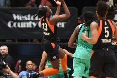 WNBA - New York Liberty 86 vs. Connecticut Sun 88 (52)