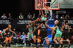 WNBA - New York Liberty 86 vs. Connecticut Sun 88 (57)