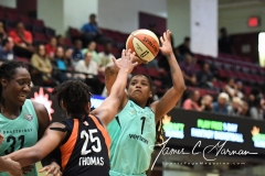 WNBA - New York Liberty 86 vs. Connecticut Sun 88 (60)
