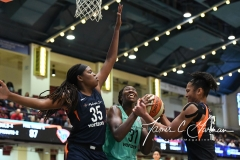WNBA - New York Liberty 86 vs. Connecticut Sun 88 (61)